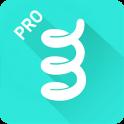 Spring Pro - It's stylish v2.0.4