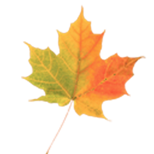 Autumn Leaves Donate LWP v1.2