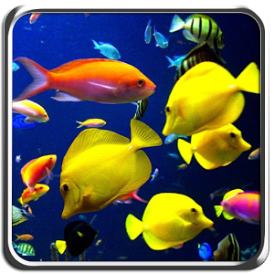 Galaxy S4 Aquarium Theme v1.0